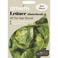 Unwins  Lettuce All The Year Round Vegetable Seeds